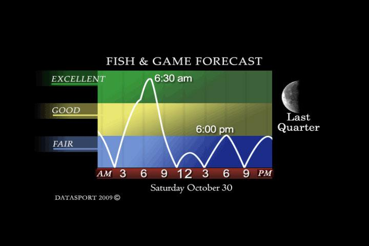 game movement forecast this weekend midwest whitetail