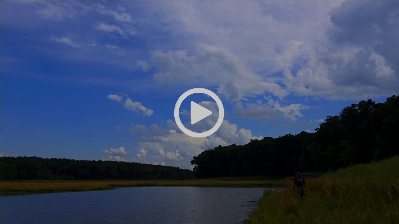 8-29-16VideoBlog.jpeg