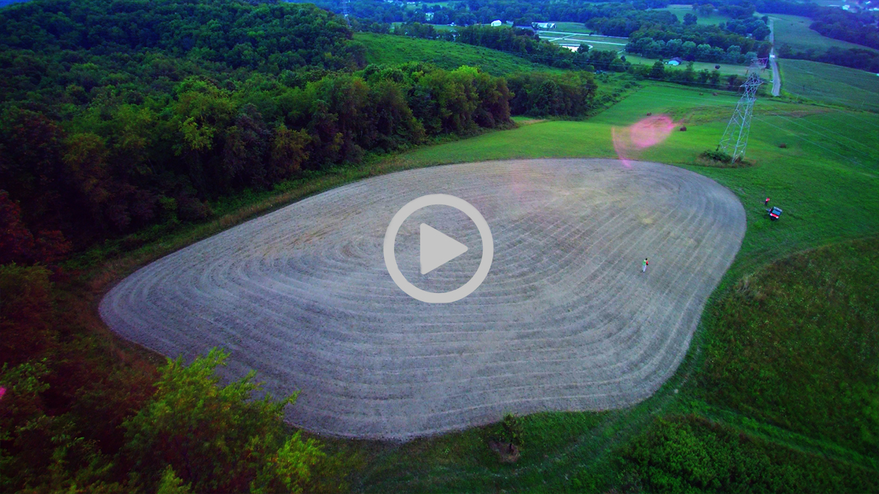Late Summer Food Plots for Deer Hunting