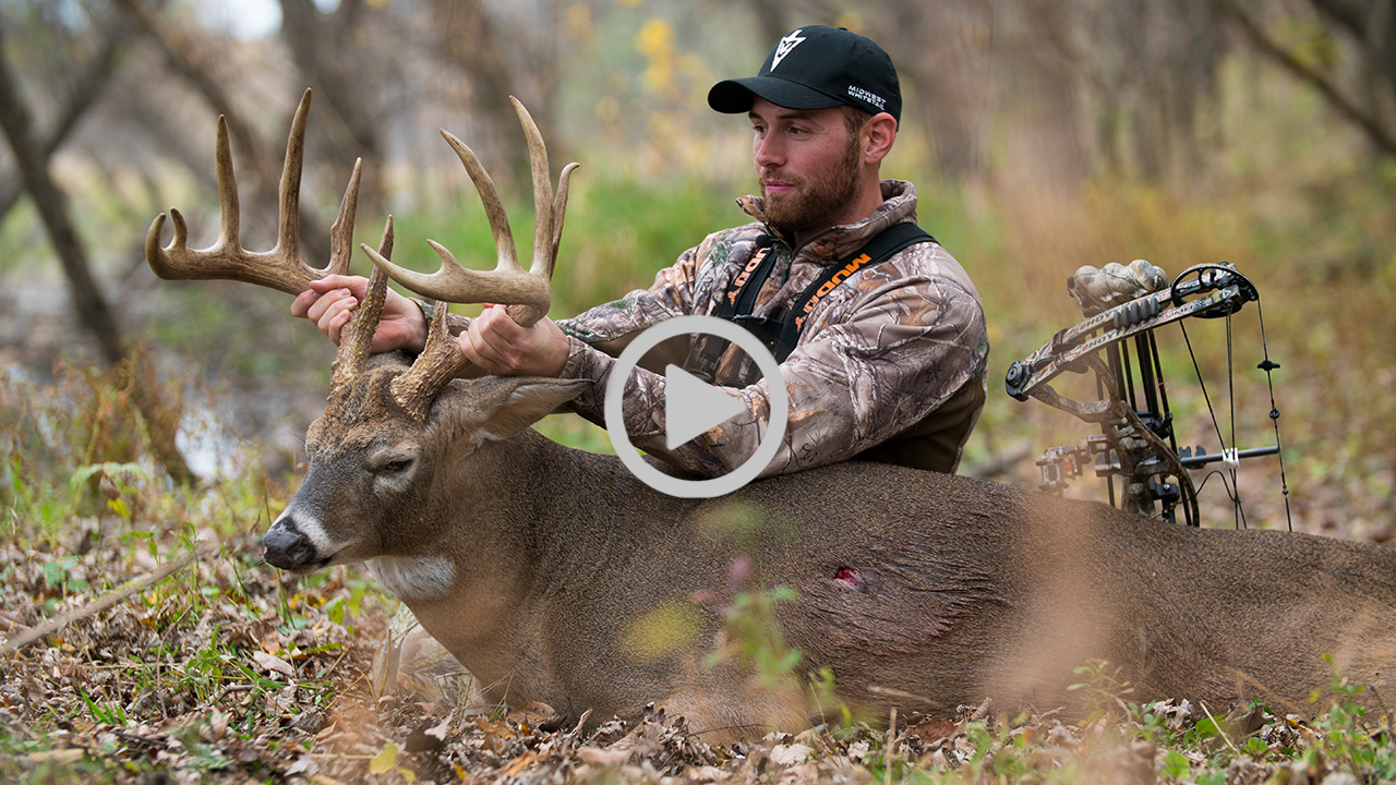 Public Land Giant Hunting Tight To Buck Bedding Areas