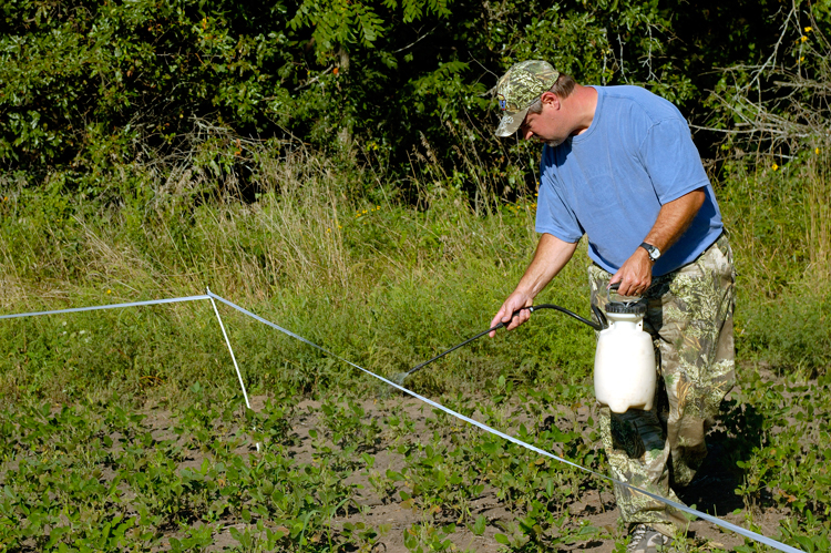 When To Open A Food Plot Fence For Hunting Midwest Whitetail